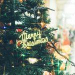 札幌のクリスマスデートプランならこれでOK!美味しいイタリアンはココ!